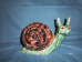 painted Garden Snail